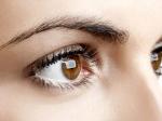 Foods for Eyesight Improvement : ಕಣ್ಣಿನ ದೃಷ್ಟಿ ಸುಧಾರಿಸಲು ಅತ್ಯುತ್ತಮ ಆಹಾರಗಳಿವು