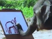 ವೈರಲ್ ವೀಡಿಯೋ: ಆನೆಯೊಂದು  ಬಿಡಿಸಿದ ಆನೆಯ ಚಿತ್ರ ನೋಡಣ್ಣಾ...