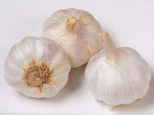Garlic to fight tumors