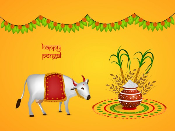 Traditions & Customs Of Pongal 2016
