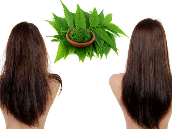 Diy Leave In Neem Hair Tonic For Long And Strong Hair
