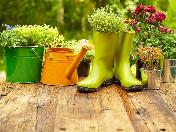 tips for gardening at home
