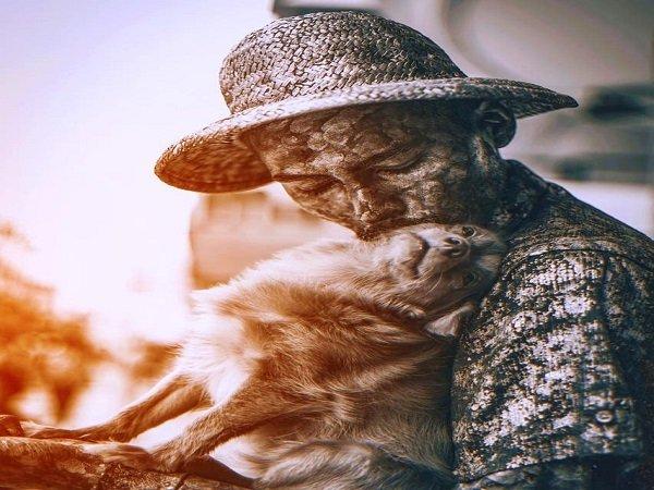 ಮಾಲಕನ ಜೀವನ ನಿರ್ವಹಣೆಗೆ ನೆರವಾಗುತ್ತಿರುವ ನಾಯಿ