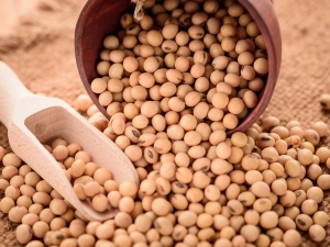 Amazing Beauty Benefits Soybeans