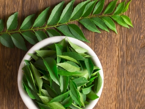 Ayurveda Tips Benefits Curry Leaf Which Should Surprise Yo