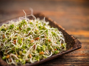 Is Sprouted Food Actually Healthier