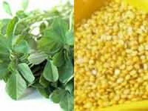 North Karnataka Fenugreek Greengram Palya