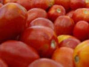 Tomato Chutney North Karnataka Special