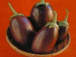 Roasted Brinjal Recipe For Chapati