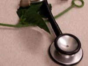 Leptospirosis Symptom Diagnosis Treatment