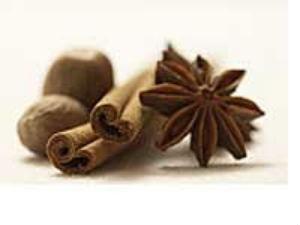 Herbs Spices As Medicine Aid