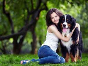 Tips For Choosing Right Dog