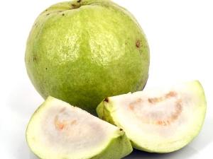 Top Health Benefit Guava