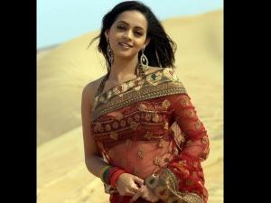 Celebrity At Transparent Saree