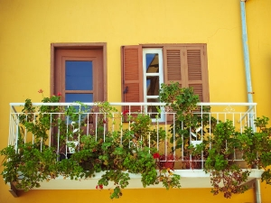 Decorate Your Balcony With Plants