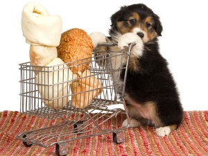Tips On How Clean Your Home If You Have Pets