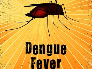 Best Foods Dengue Patients