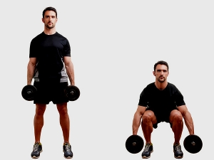 The Basics Muscle Building