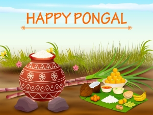 Traditions Customs Pongal