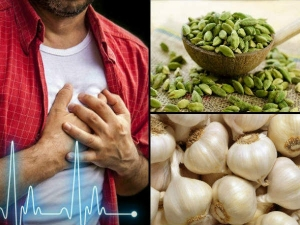 Ayurvedic Remedies Cure Heart Blockage