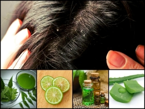 How Use Neem Cure Dandruff