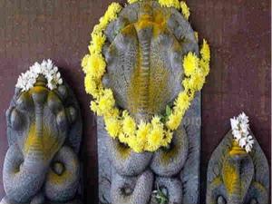 How Observe Nag Panchami