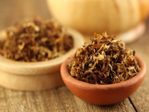 Bacteria Chewable Tobacco Increases Cancer Risk