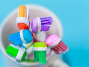 The Ugly Truth About Your Toothbrush
