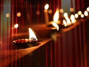 Diwali Decoration Decorating Garden With Lights