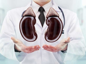 Top Home Remedies Kidney Infection