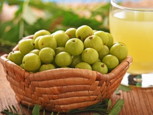 Amla The Perfect Ingredient Get Rid Hair Problem