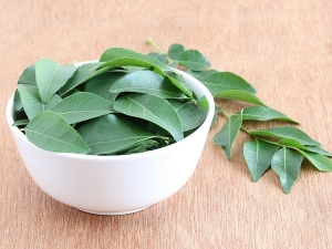 Benefits Curry Leaves Hair Care