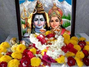 Pooja Samagri List Required Performing Pooja On Maha Shivara