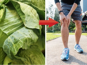 Gout Pain Try Cabbage Leaf Remedy
