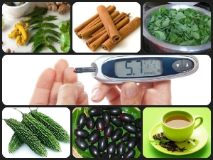 Ayurvedic Home Remedies Diabetes