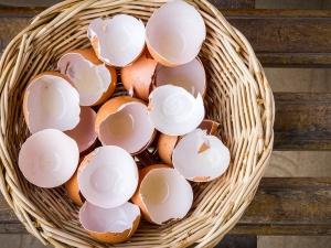 Benefits Using Egg Shell Different Egg Shell Masks Try