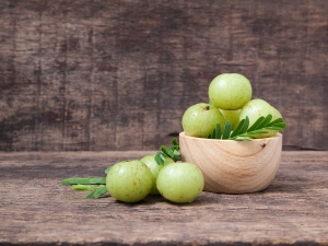 Amla The Perfect Ingredient Get Rid Hair Skin Problems