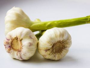 Is Sprouted Garlic Safe Eat