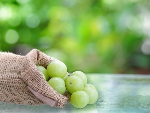 Top Benefits Using Amla Water Skin Hair Care
