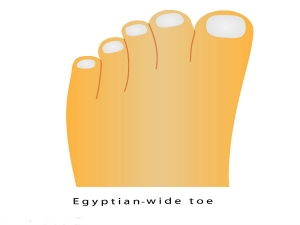 What Exactly Does The Shape Your Toes Reveal