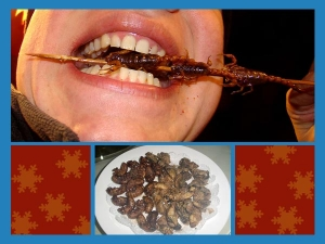 Edible Insects That People Actually Eat