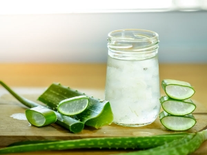 Different Ways Use Aloe Vera De Tan At Home