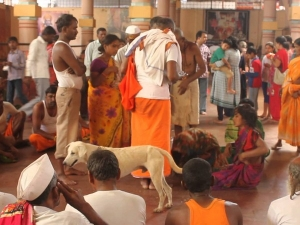 Temples India That Are Known Exorcism