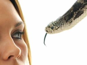 Snake Dreams During Pregnancy Have Secret Message