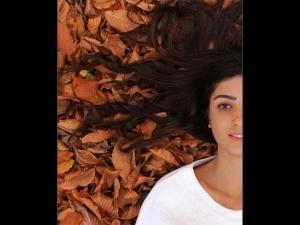 Diy Coconut Oil Hair Masks Extremely Dry Hair
