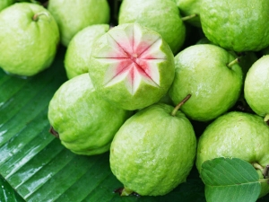 Is It Healthy Eat Guava During Pregnancy