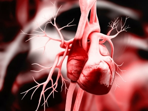 Foods That Clean Your Arteries And Heart
