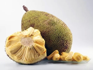 From Curing Diabetes To Detox Here Are 15 Medicinal Benefits Of Jackfruit