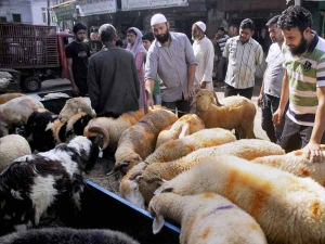During Bakrid Festival Why Chicken Is Not Eaten