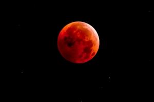 Amavasya On Solar Eclipse Saturday